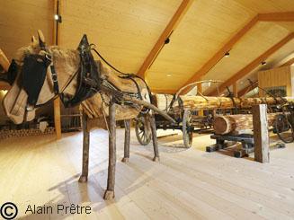 cheval attelé pour le débardage des bois